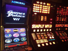 Games Palace VII | Simply Wild
